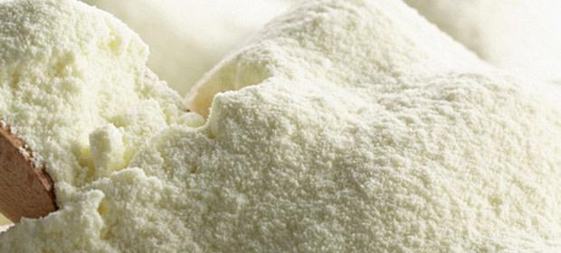 Whole Milk Powder 26%