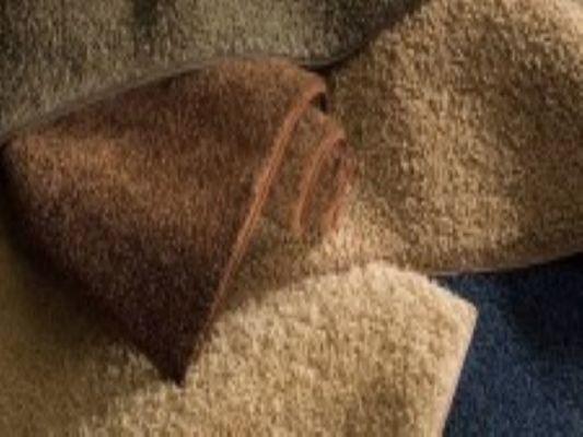 Carpet, Hardwood & Flooring - Strong Cash Flow