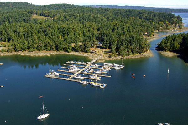 12-Acres with 430' of Lake Frontage Multi-Use Prop.