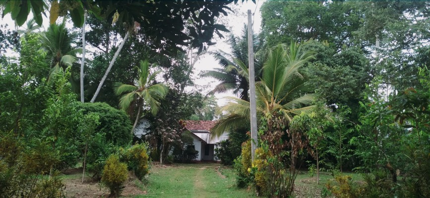 100 Year Old House for Sale in Sri Lanka