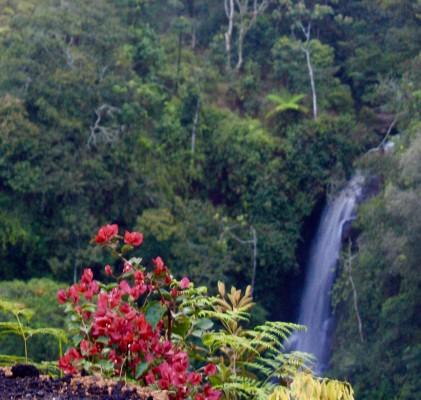 Waterfall Cafe Retreat