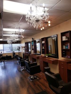 Salon for Salon, 15 yr History