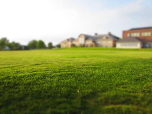 Lawn Maintenance Business - Commercial