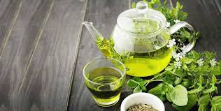 Green Tea Manufacture Wanted Funding