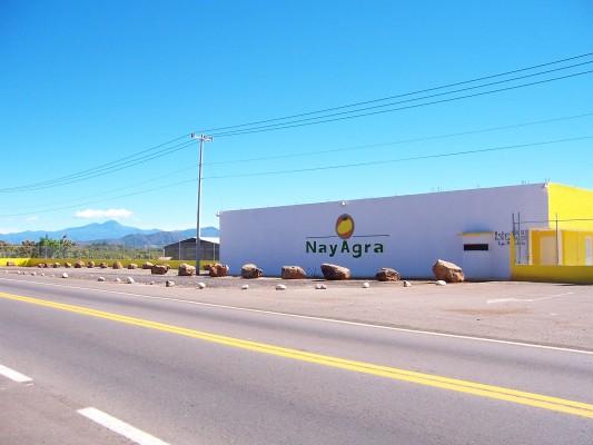 Producer/Packer/Exporter Fresh Produce Mexico