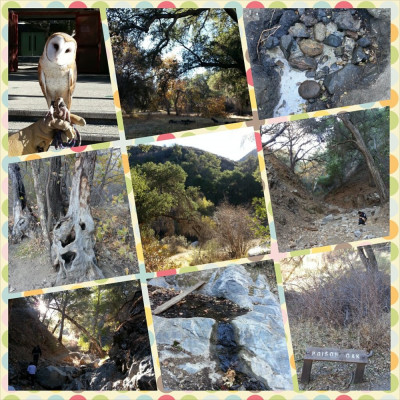 Land for Sale 4 Parcels in LA County + 13 Oil Wells