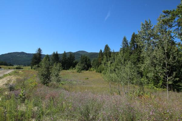 Salmon Arm - 9 Acre Development Property M1 Zone