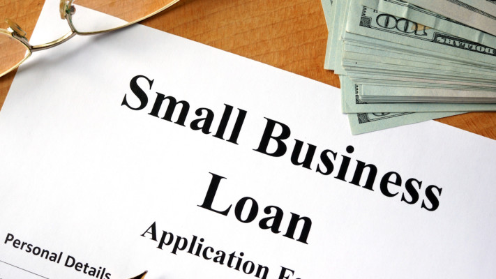 35% Stake of Micro Loan Company for Sale
