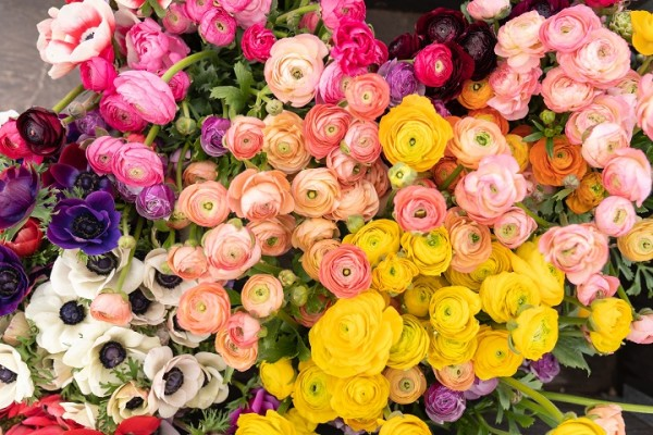 Nationally Known Florists