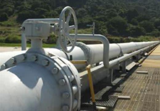 Fuel Trader Seeks Buyers