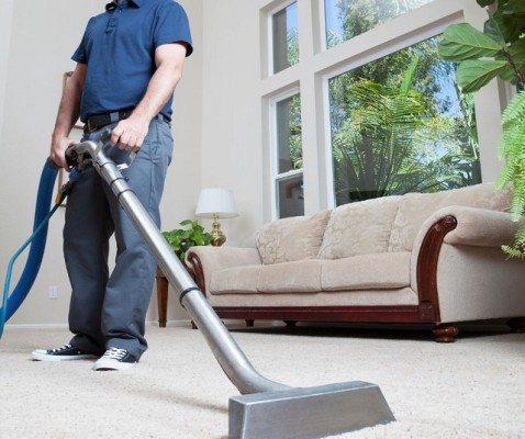 Great Carpet Cleaning Franchise
