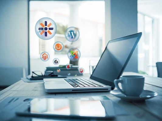 11 Yr. International Web Development & Design Firm