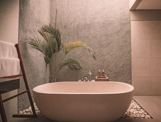 Wall Finish & Limestone Plaster Provider/Installer