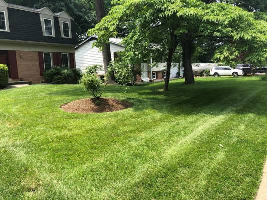 30+ Year Commercial and Residential Lawn Care