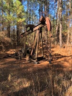 17 Well Oil Producing Property - La. - Partner WTD