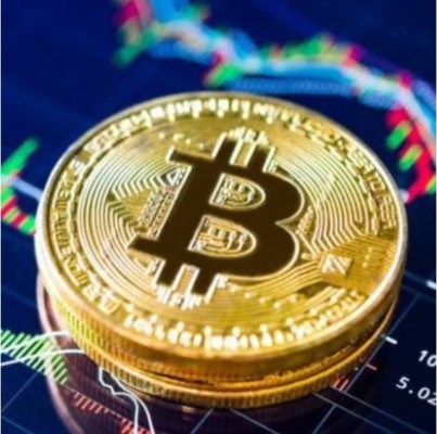 BitCoins Trading + Monthly Profit