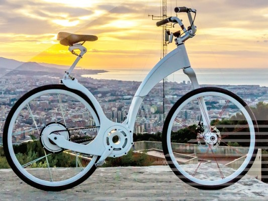 Scaling Electric Bike Brand
