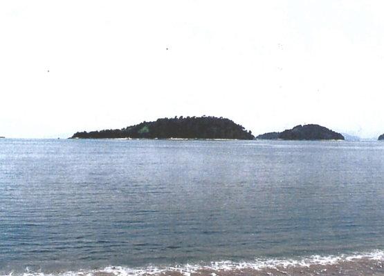 A Beautiful Island Near The Coast Of Brazil To Buy