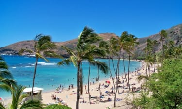 Hawaii Vacation Rental Company