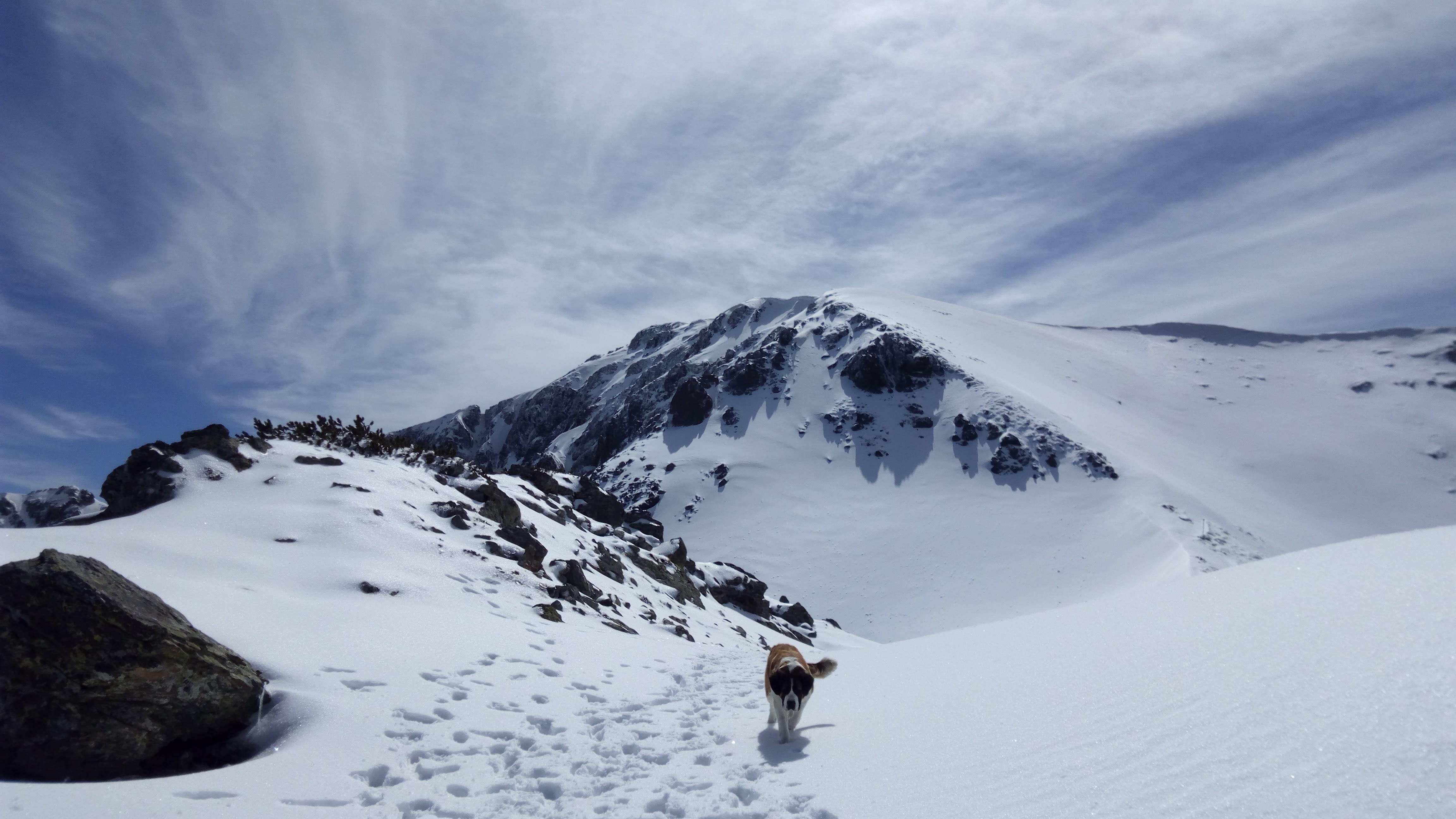 saint-bernard-in-zapada-prin-muntii-parang
