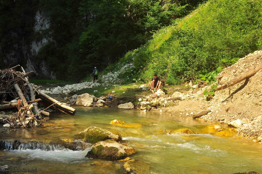 In apa rece a Dambovitei Rucar
