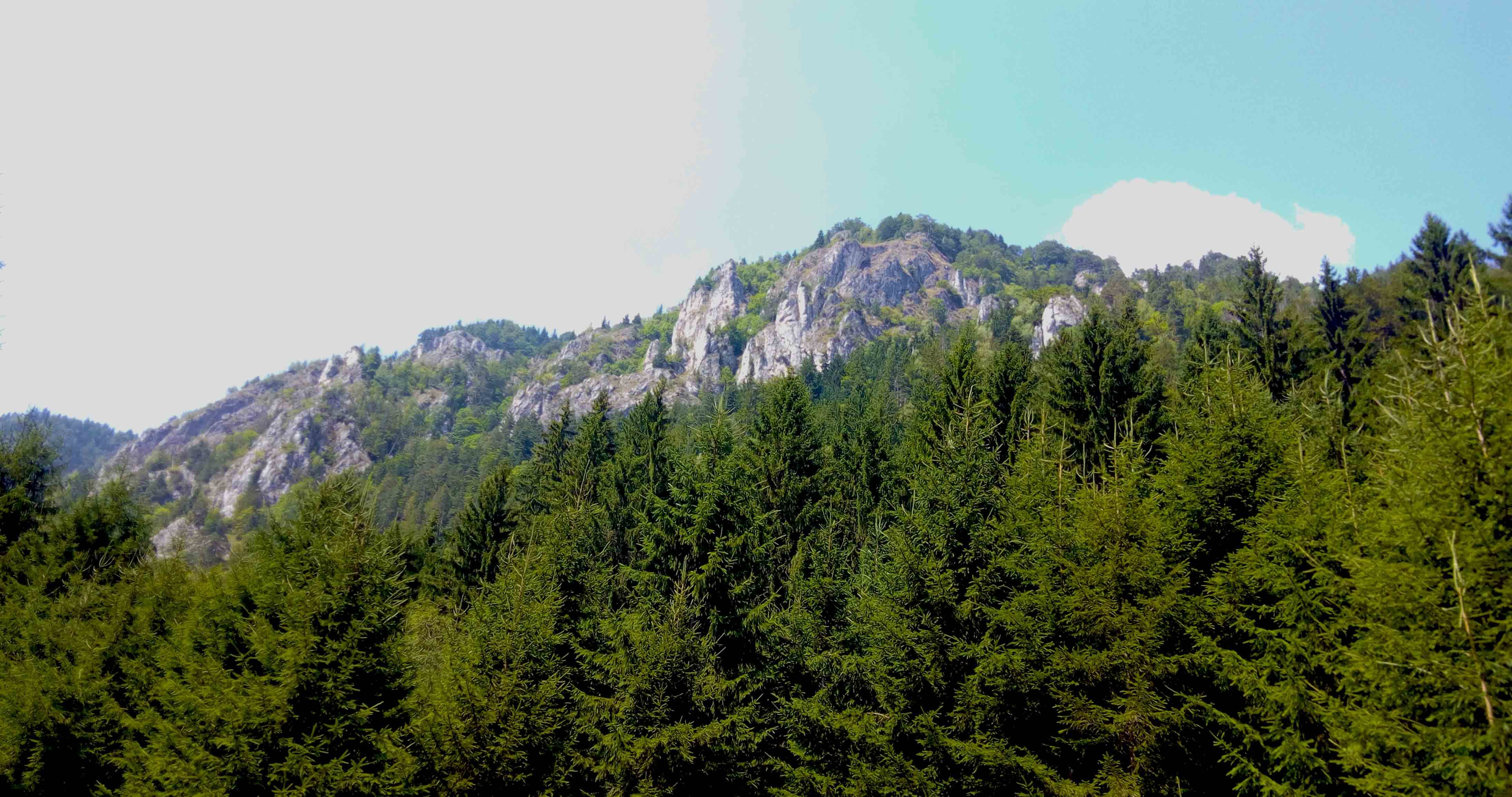 Muntele Ghimbav