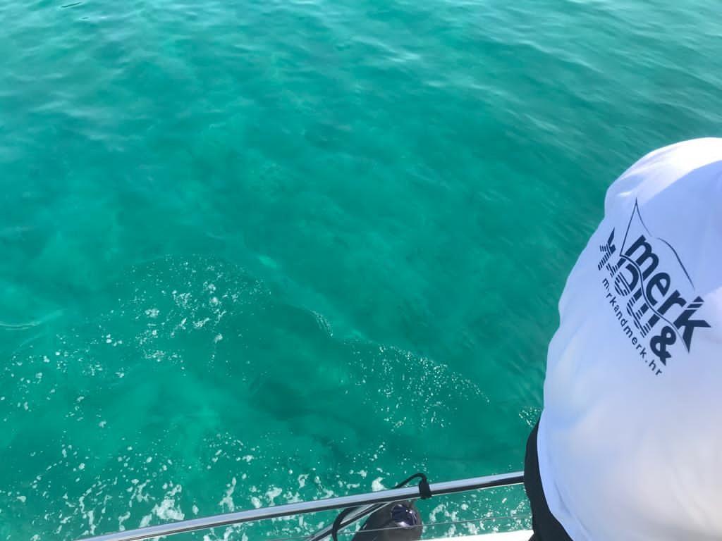 merk&merk Yachtberatung