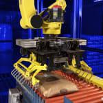 Robotic Bag Palletizer   MESH Automation