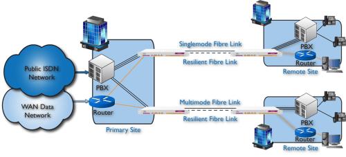 Emux: extending multiple voice & data services over fibre