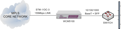 WCM5100 delivering Ethernet services from an MPLS core network