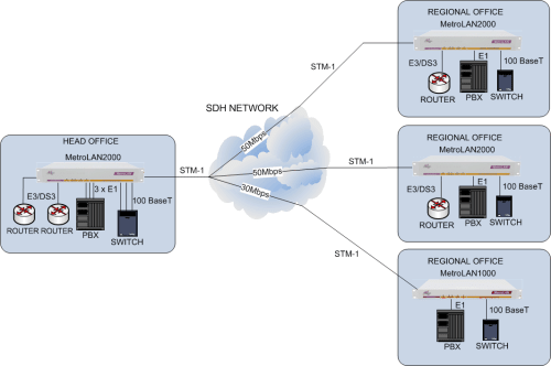 Multi-site Multi-service Delivery using the MetroLAN2000