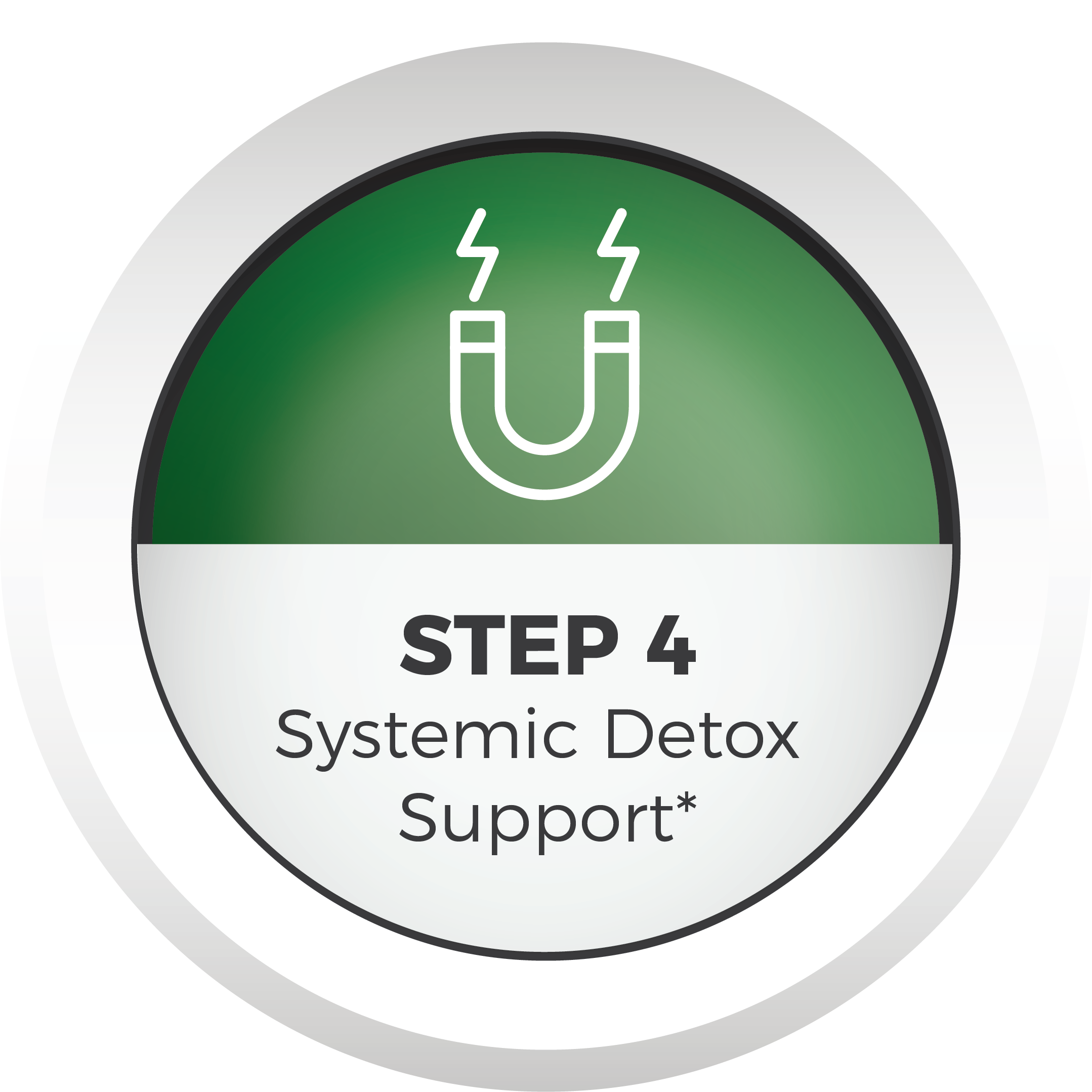 step 4 Systemic Detox icon