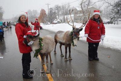Reindeer_Games_in_2015_CC_parade.jpg