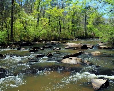Line_Creek_Nature_Center-w1200.jpg