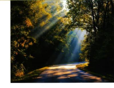 2018_Morning-Drive----Rickie-Smith.jpg