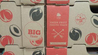 BIG-Taste-Box.jpg