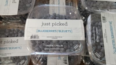 Just-Picked-Blueberry-Packaging.jpg