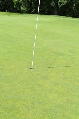 Golf-(127)-GCCC-Golf-BLCC-7-26-21.JPG