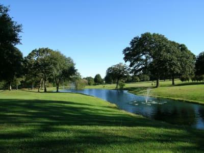 GolfCourseBell-JO258.jpg
