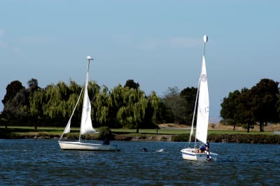 Shoreline_Lake_8.jpg