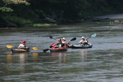 Four-people-Kayaking.jpg