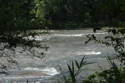 River-photo.JPG