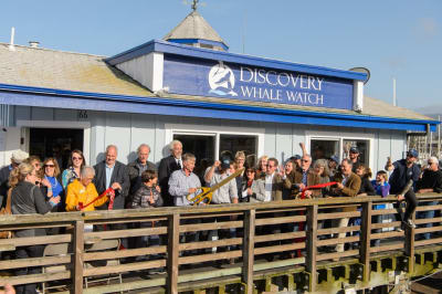 Discovery-Whale-Watch-016.JPG