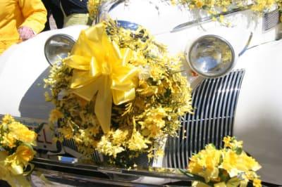 Daffodil-Grill.jpg