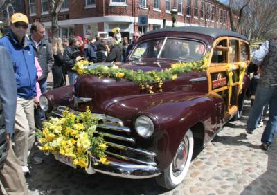 Daffodil-Parade-X.jpg