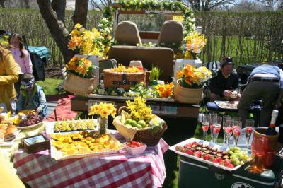 Daffodil-Tailgate-Picnic.jpg