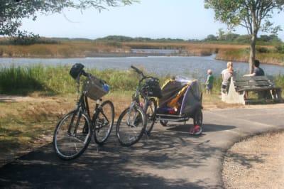 Madaket-Bike-Path(1).jpg