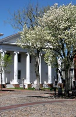 Methodist-Church-and-White-Tree-w412.jpg