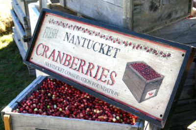 Nantucket-Cranberries(1).jpg