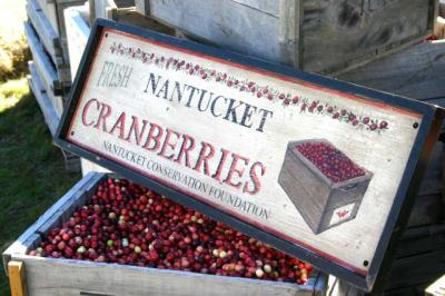 Nantucket-Cranberries(1).jpg
